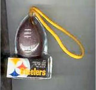 NFL Pittsburgh Steeler Football SOAR
